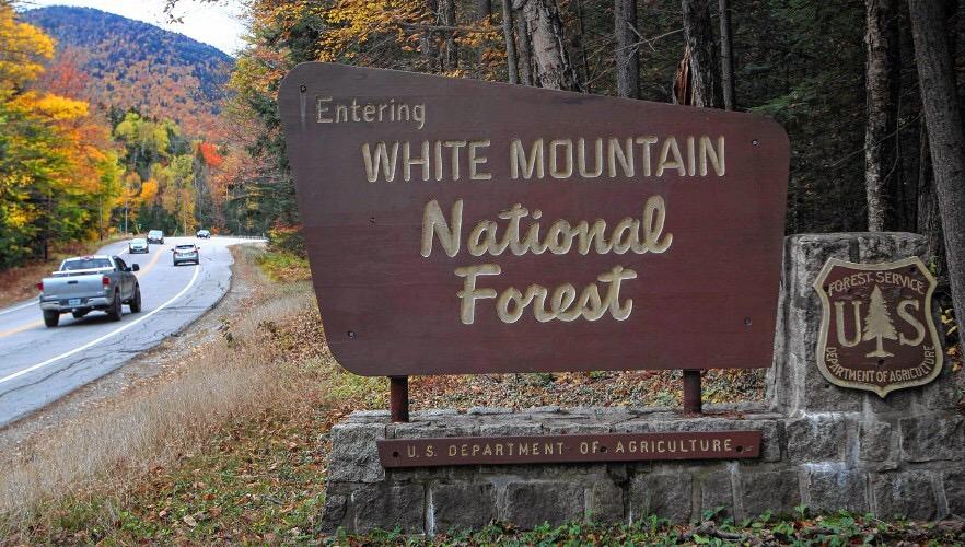 Lifetime pass to mountains parks the landaff ledger for National park senior citizen lifetime pass