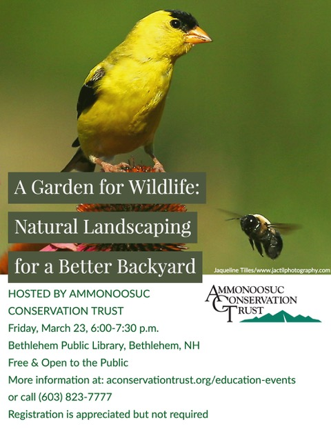 Garden for Wildlife Flyer