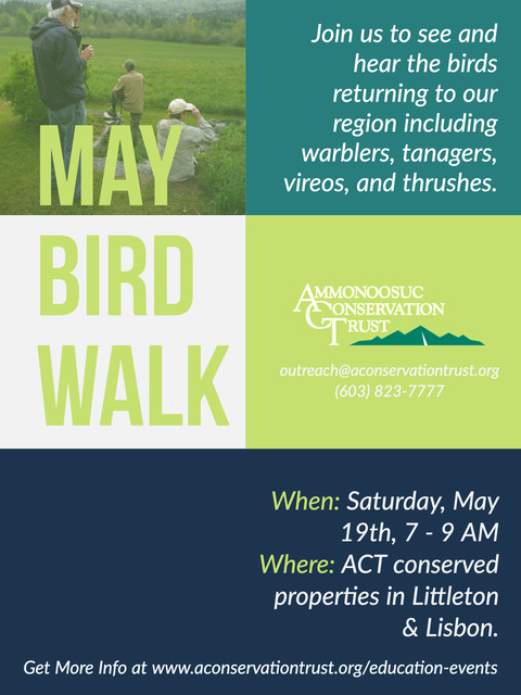 2018 May Bird Walk